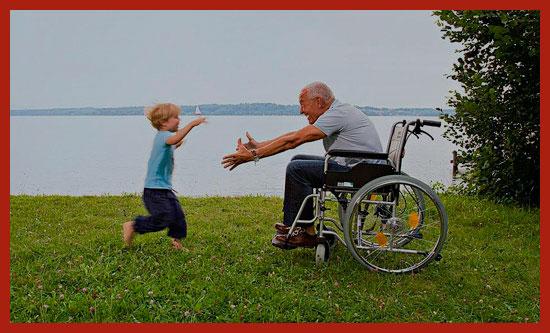 Изображение - Льготы инвалидам на земельный налог zemla-invalida-1