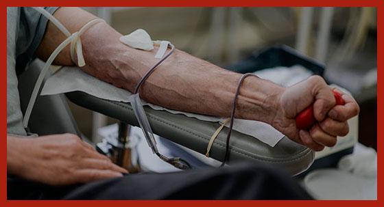 почетный донор на переливании крови