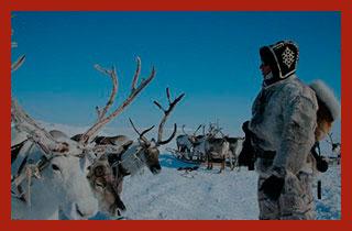 пенсии северянам